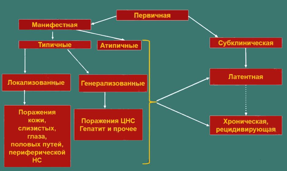 Классификация ВПГ-инфекции
