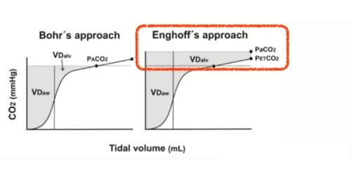 COVID-19: высокое альвеолярное мертвое пространство - не верьте капнографу!