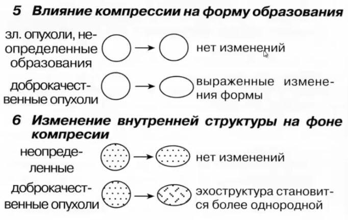 5 Влияние компрессии на форму образования. 6 Изменение внутренней структуры на фоне компрессии