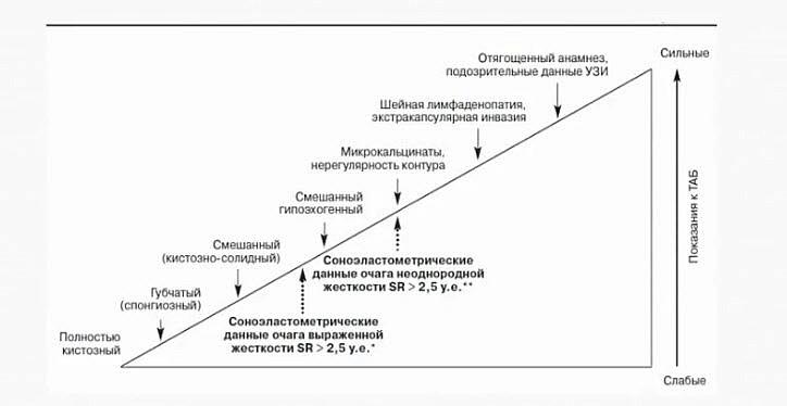В структуре диагностики и лечения узлового зоба среди показаний к тонкоигольной аспирационной биопсии